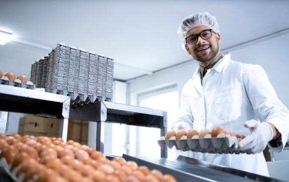 Gestão de fornecedores para indústria para alimentos