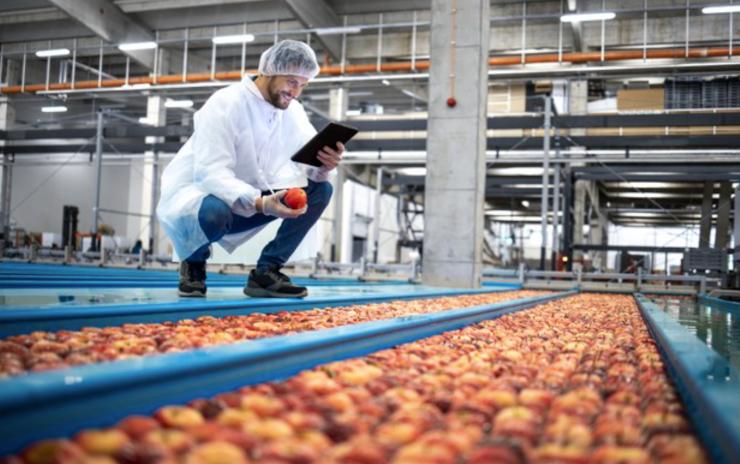 FSSC 22000 - V. 5.1 - Segurança de Alimentos - Interpretação - Indústria